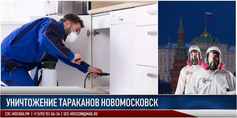 тараканы в Новомосковске