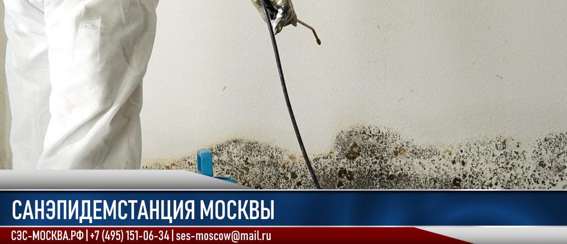 Санэпидемстанция в Москве