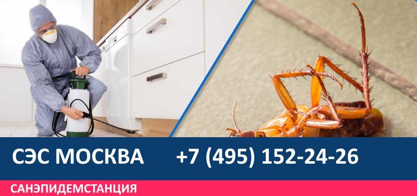 Дезинсекция Проспект Вернадского